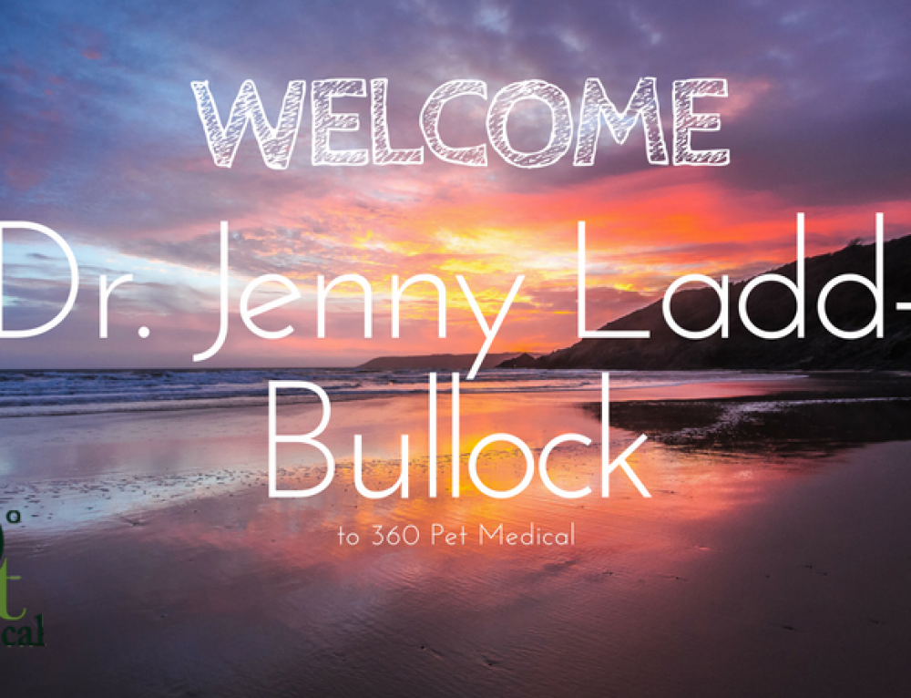 360 Pet Medical Welcomes Dr. Jenny Ladd-Bullock