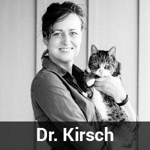 dr-Kirsch
